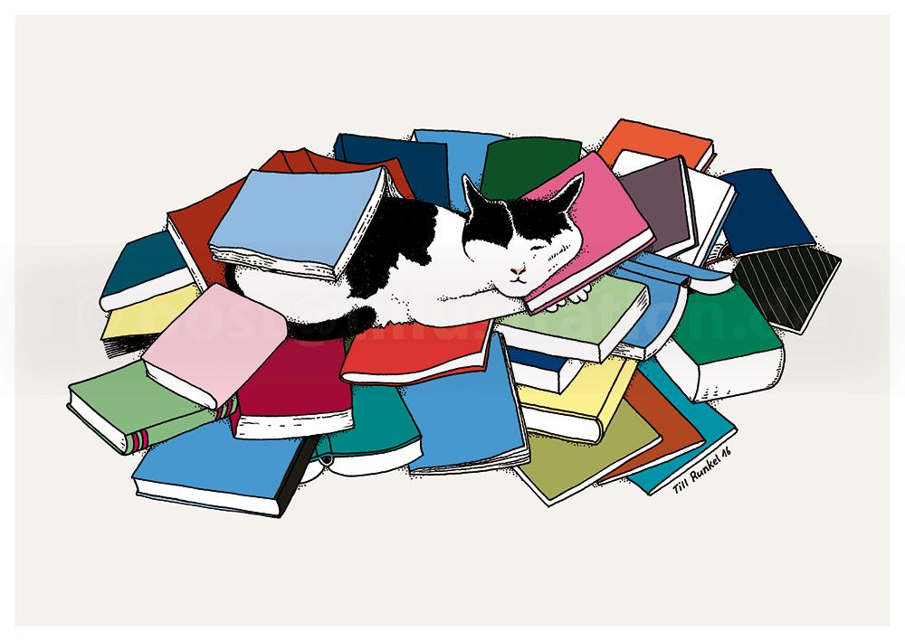 Kater Jethro: Der Traum von seinen Büchern